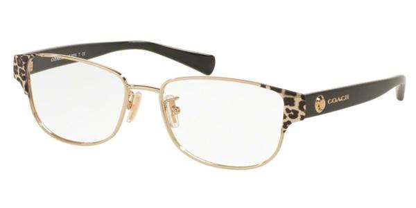 Coach Eyeglasses - HC5063, HC5065, HC5066, HC5067, HC5072Q ...